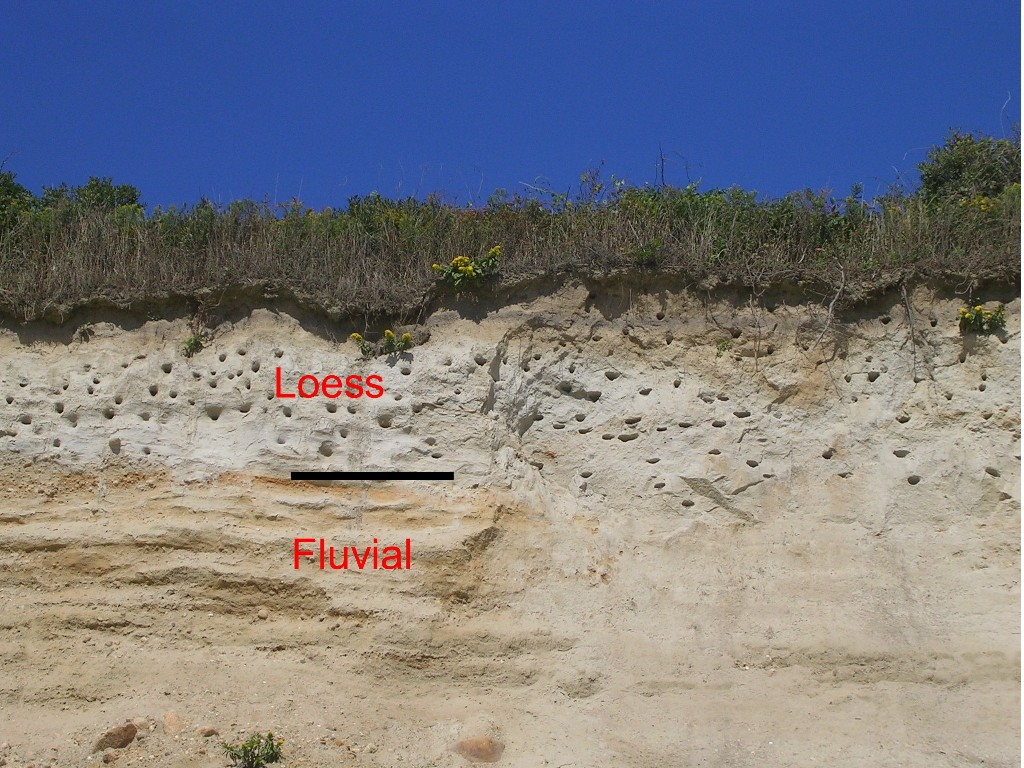 Loess soil images galleries with a bite for Soil definition geology
