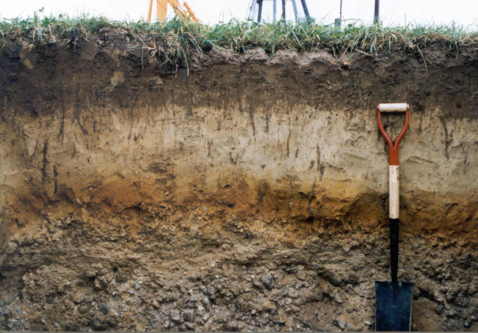 1000 images about soil horizons on pinterest for Soil profile video
