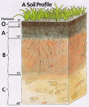 Factors of soil formation plymouth county for Soil profile video